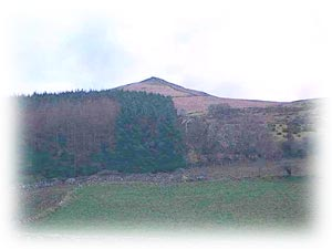 The area surrounding Gyrn Goch